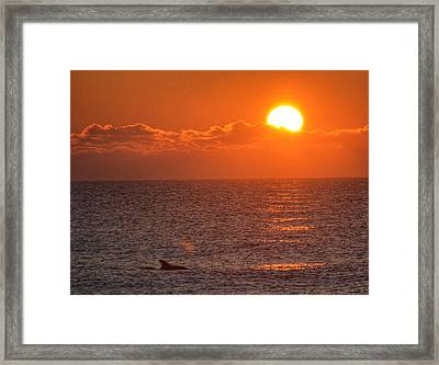 Christmas Sunrise On The Atlantic Ocean Framed Print