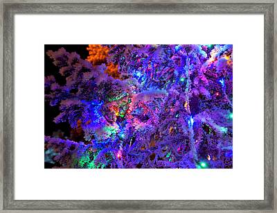 Christmas Tree Night Decoration Framed Print by Tamara Sushko