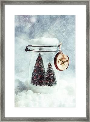 Christmas Tree Snowglobe Framed Print