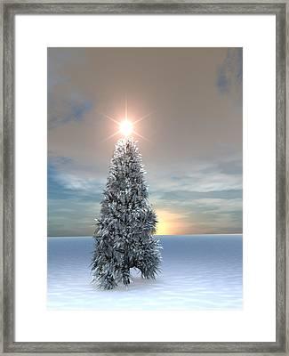 Christmas Tree Sunrise Framed Print