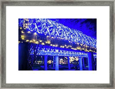 Christopher Columbus Park Trellis Lit Up For Christmas Boston Ma Xmas Framed Print