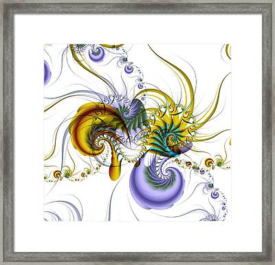 Chromatic Shrimp Framed Print