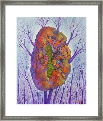 Chrysalis Framed Print by J W Kelly