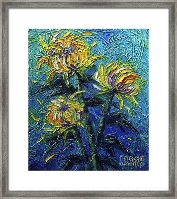 Chrysanthemums Etude Framed Print by Mona Edulesco