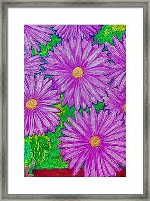 Chrysanthemums Pink Framed Print by Adrienne Talbot