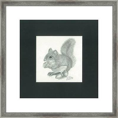 Chubby Squirrel With Acorns Framed Print by Danielle McCoy