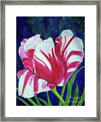 Chucks Tulip Framed Print