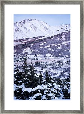 Chugach In Alpenglow Framed Print