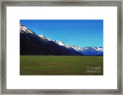 Chugach Mountains Green Plain Framed Print by Thomas R Fletcher