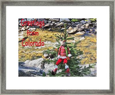 Chumps Christmas Framed Print