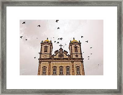 Framed Print featuring the photograph Church Birds by Kim Wilson