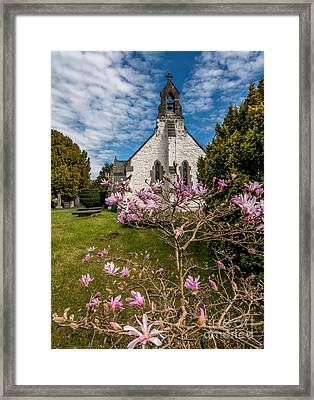 Church Blossom Framed Print by Adrian Evans
