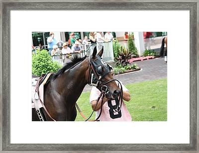 Churchill 6 12 10 148 Framed Print by Jim Simms
