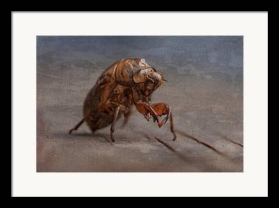 Cicada Framed Prints