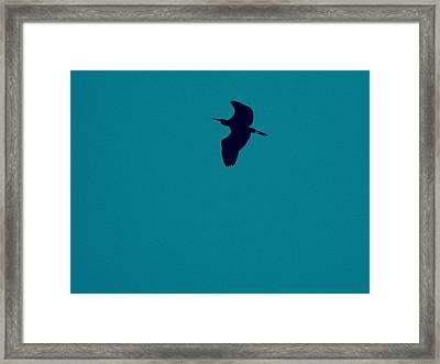Cigogne En Silhouette Framed Print