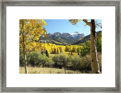 Cimarron Gold Framed Print by Eric Glaser