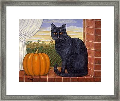 Cinder The Cat Framed Print by Linda Mears