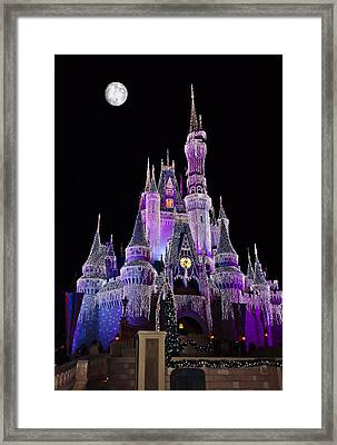 Cinderellas Castle At Night Framed Print