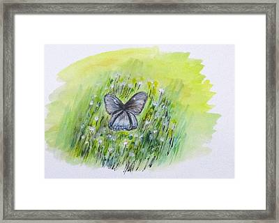 Cindy's Butterfly Framed Print