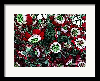 Senetti Drawings Framed Prints