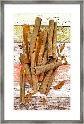 Cinnamon Bark Framed Print