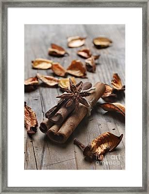 Cinnamon Framed Print by Jelena Jovanovic