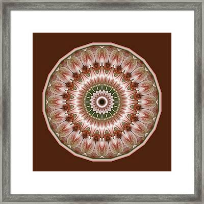 Cinnamon Roses And Thorns Framed Print