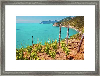 Cinque Terre Italy Vineyards Framed Print by Joan Carroll