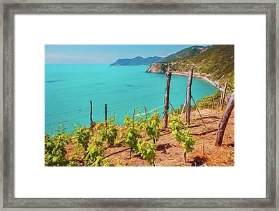 Cinque Terre Italy Vineyards Framed Print