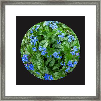 Circle Of Blue Framed Print by Elizabeth Reynders