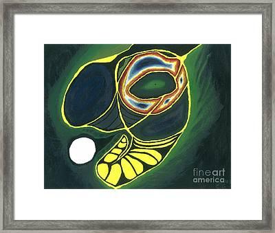Circle Of Life Framed Print by Caleb Grow