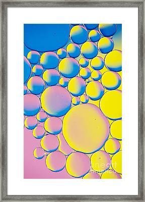 Circleastic Framed Print