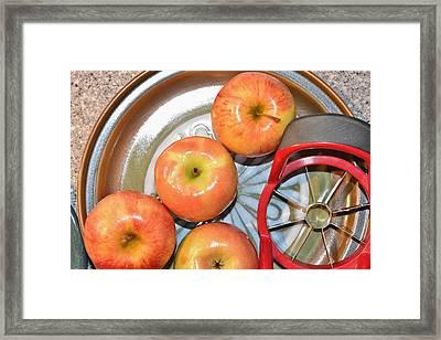Circles 1 - Apples Framed Print by Linda Brody