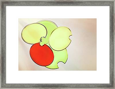 Circles Of Red, Yellow And Green Framed Print
