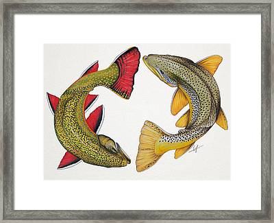 Circling Brook And Brown Trout Framed Print by Nick Laferriere