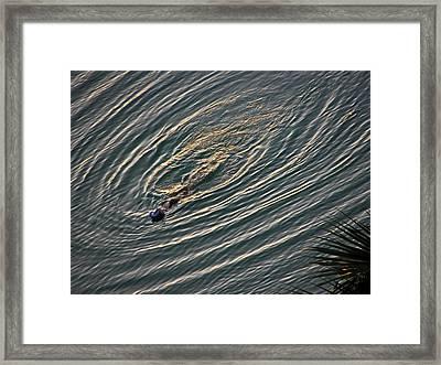 Circular Pattern Framed Print by Elizabeth Hoskinson