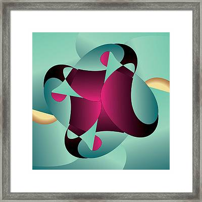 Circularium No. 2405 Framed Print