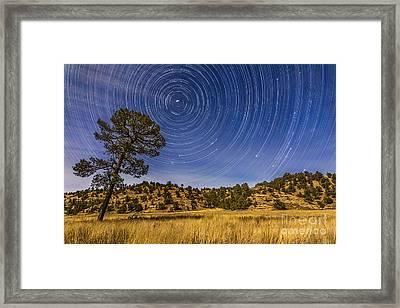 Circumpolar Star Trails Over Mimbres Framed Print by Alan Dyer