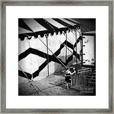 Circus Conversation Framed Print by Silvia Ganora