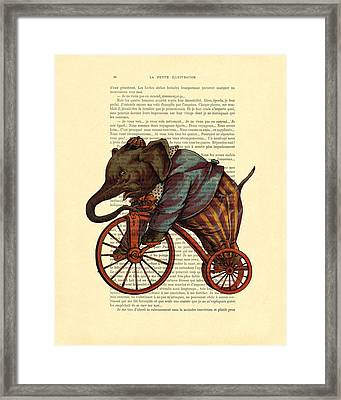 Circus Elephant On Bicycle Framed Print