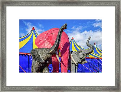 Circus Life Framed Print by Ken Blystone
