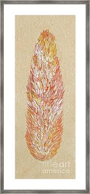 Citrine Tangerine Fire Opal Part Of My Fire Opal Collection By Janet Watson Art Framed Print