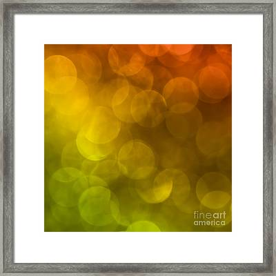 Framed Print featuring the photograph Citrus 2 by Jan Bickerton