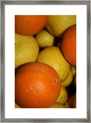 Citrus Box Framed Print by Joshua Sunday
