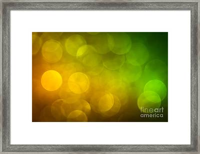 Framed Print featuring the photograph Citrus by Jan Bickerton