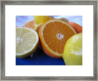 Citrus On Blue Plate Framed Print by Kim Pascu