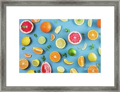 Citrus Summer Framed Print