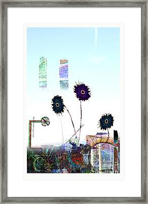 City Blooms Framed Print by Andy  Mercer