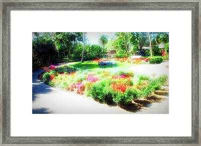 Framed Print featuring the photograph City Flare Garden Park by Aimee L Maher Photography and Art Visit ALMGallerydotcom