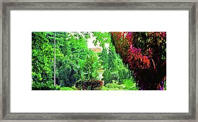 City Jungle 1 Framed Print by Steve Ohlsen